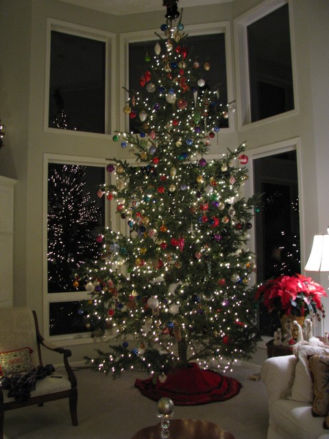 Christmas Tree Traditional Living Room Minneapolis