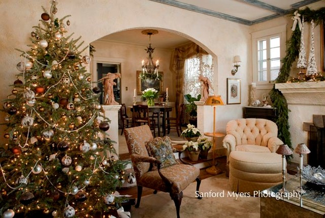 christmas tree in a small living room tree traditional living room nashville 27465