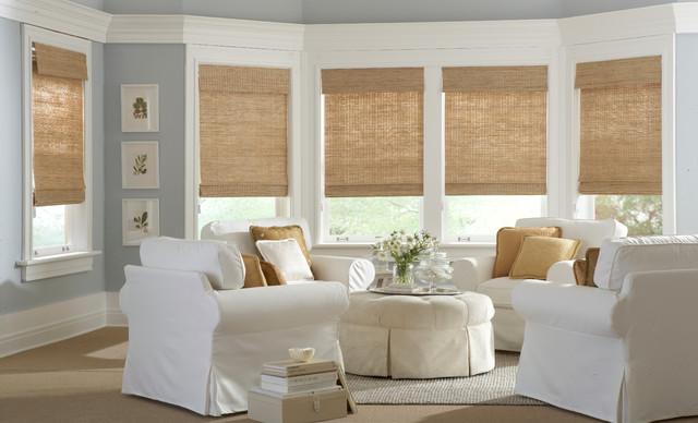 Classic Roman Natural Shades Traditional Living Room