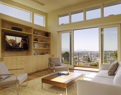Cole Valley Hillside modern living room