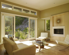 Cole Valley Hillside modern-living-room