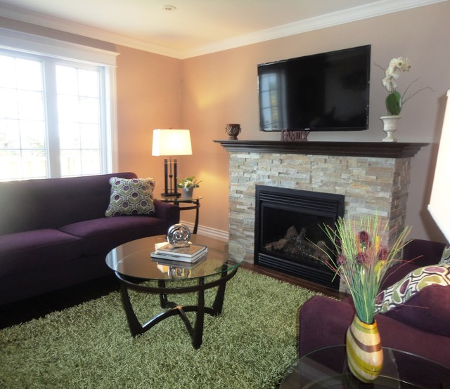 Collection of my work--Living/Family Rooms contemporary-living-room