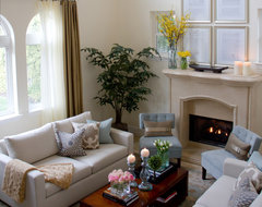 Contemporary and Casual Living room traditional-living-room
