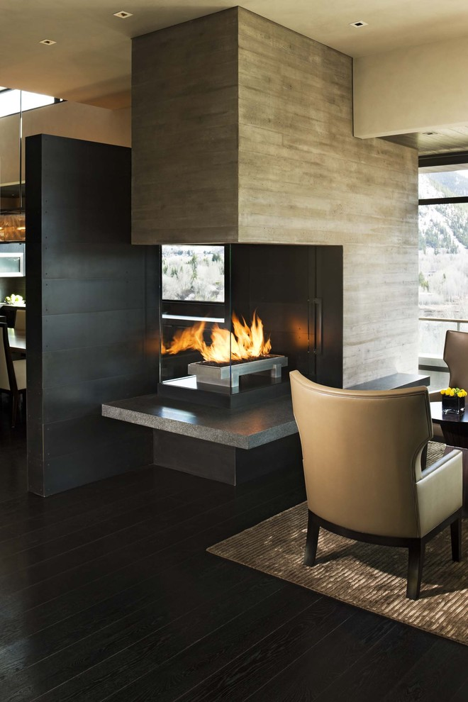 Living room - large contemporary open concept living room idea in Denver with a two-sided fireplace