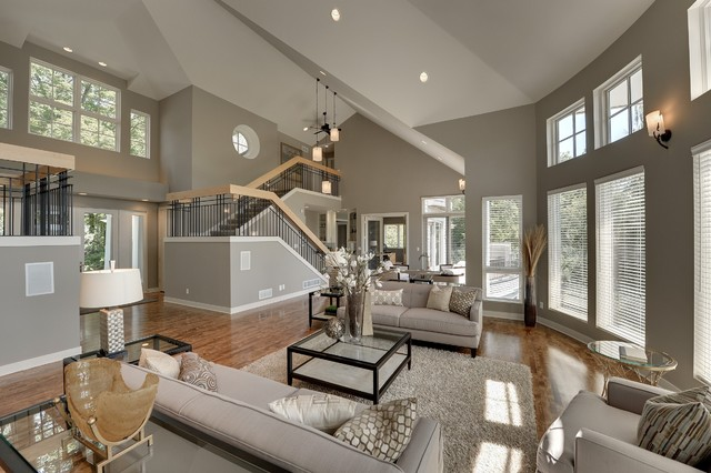 Contemporary in Deephaven contemporary-living-room