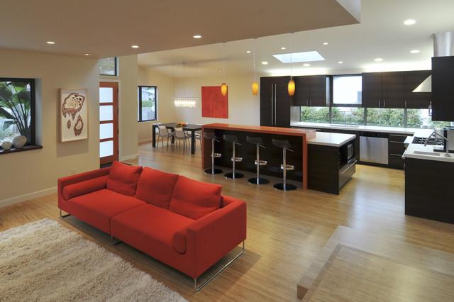 Ana Williamson Architect contemporary-living-room