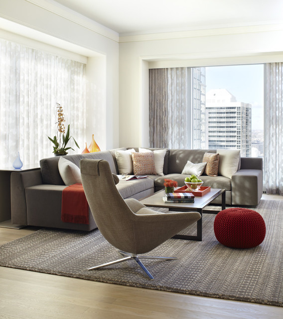 Contemporary Living Room - Contemporary - Living Room - Other