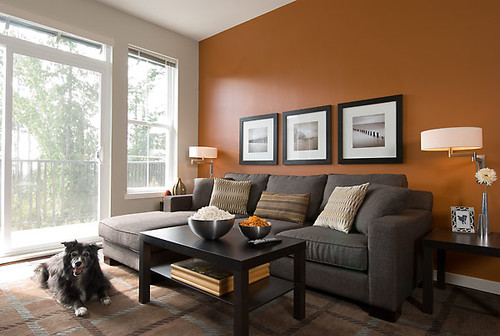 The burnt orange wall is stunning what is its exact color for Burnt orange and brown living room concept