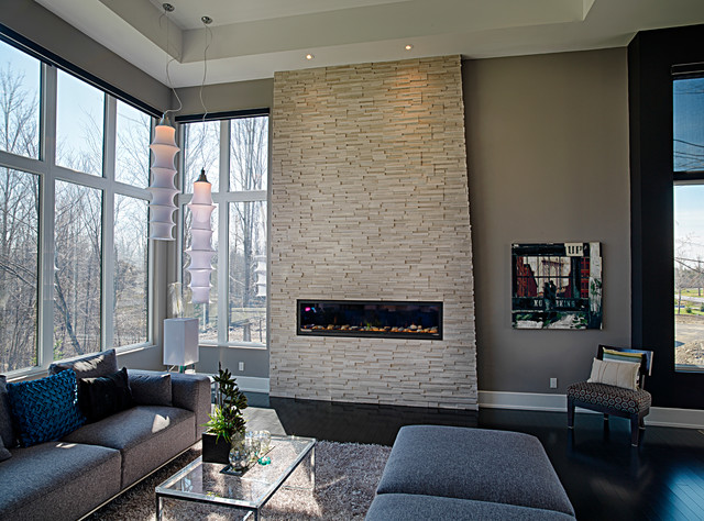 Contemporary Living Room In Grey Tones Contemporary Living Room Ottawa