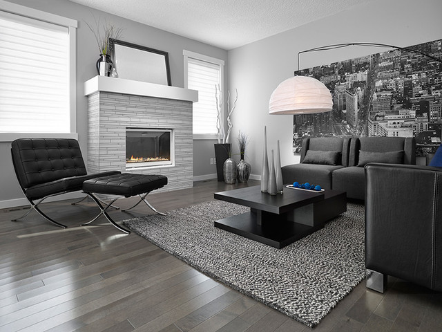 Smokey Grey Homes By Avi Contemporary Living Room