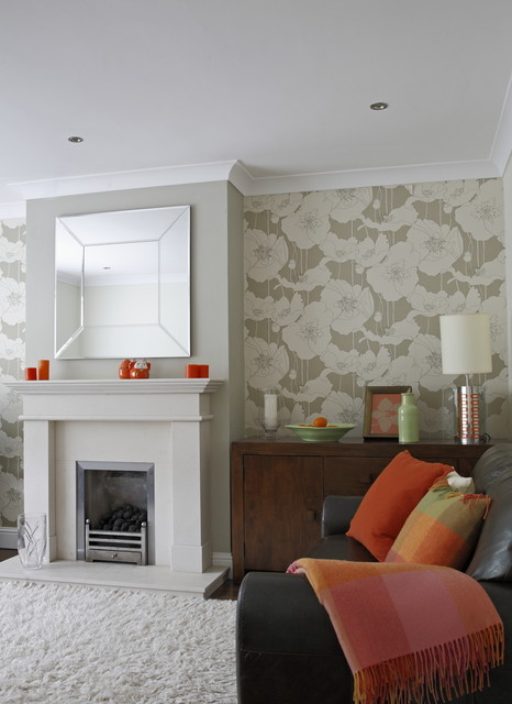 Orange Colour Accents Contemporary Living Room