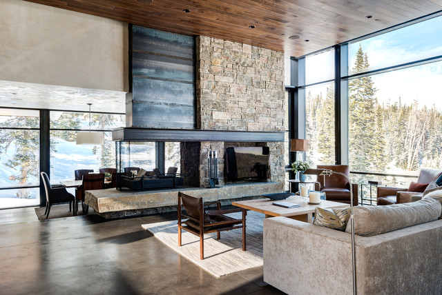 extraordinary houzz contemporary living room | Mountain Modern