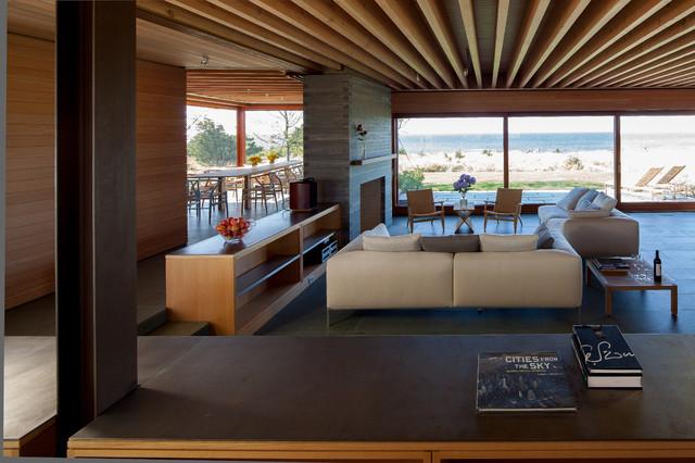 Island Residence contemporary-living-room