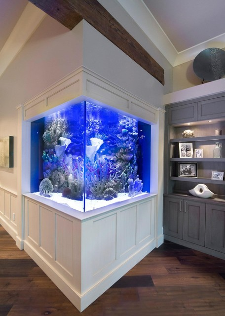Aquarium Living Room Decor: Contemporary Residential Home W/ Integrated Aquarium