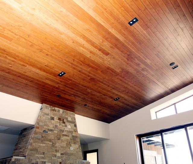 Contemporary / Rustic Design-Colorado eclectic-living-room