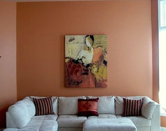 coral living room contemporary-living-room
