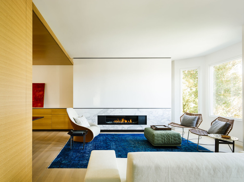Living room - contemporary formal and open concept living room idea in San Francisco with white walls, a ribbon fireplace, a stone fireplace and no tv