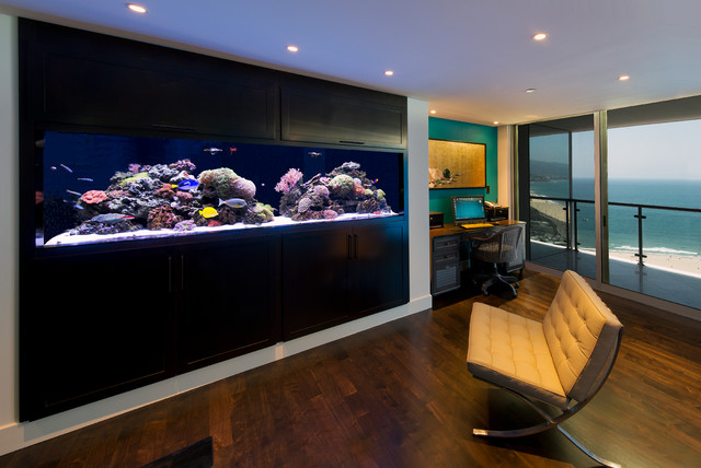 300 Gallon In wall Living Reef Installation