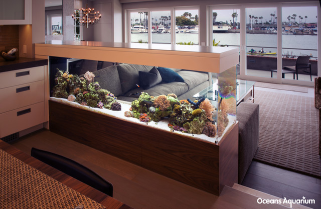 Oceans Aquarium Inc Specialty Contractors. 200 Gallon Room Divider Living  Reef Installation Tropical Living Room