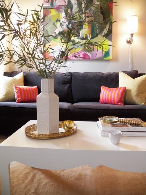 D.C. Apartment eclectic-living-room