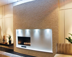 Dakota Fireplace contemporary living room