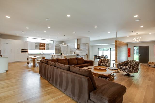 Dallas Renovation modern-living-room