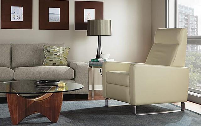 Dalton Leather Chair Room By Ru0026B Modern Living Room
