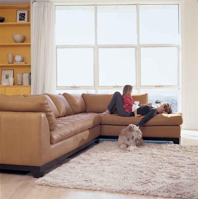 Dania Furniture contemporary-living-room