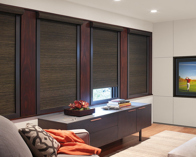 Designer Roller Shades Contemporary Living Room Phoenix By Elite Shutters And Blinds
