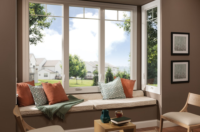 Designing Living Spaces with Windows. traditional-living-room