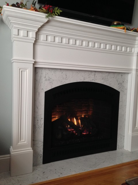 Direct Vent Gas Fireplaces Traditional Traditional Living Room New Yo