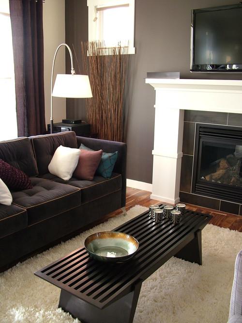 Distinguish great room contemporary living room