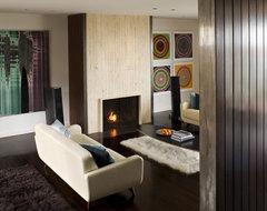 Eberhart modern-living-room