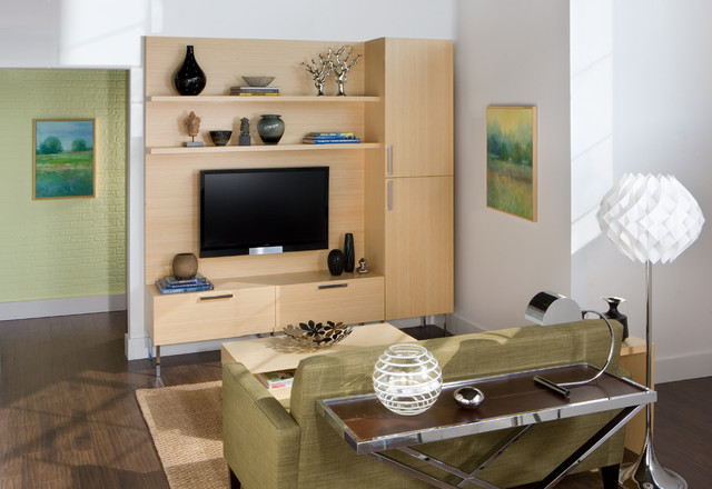 eco friendly bamboo wall unit - modern - living room - new york