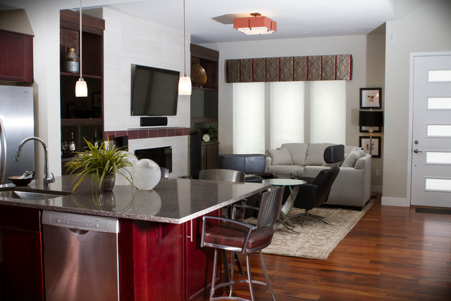 Eriks Bachelor Pad Contemporary Living Room Other