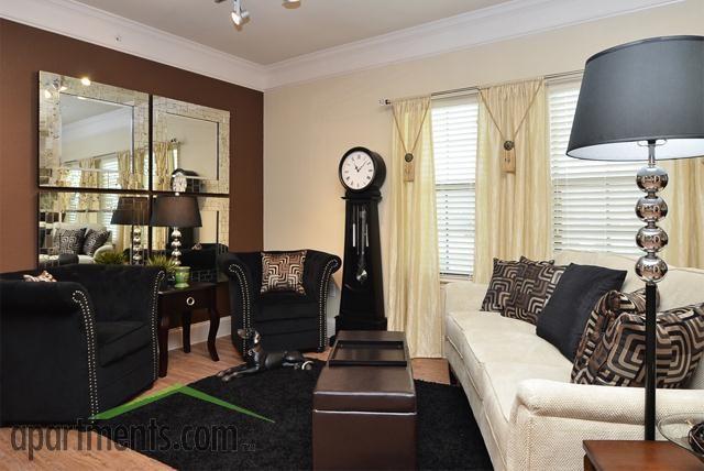 Evans Ranch San Antonio Texas modern-living-room