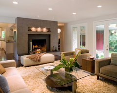 Family Room contemporary-living-room