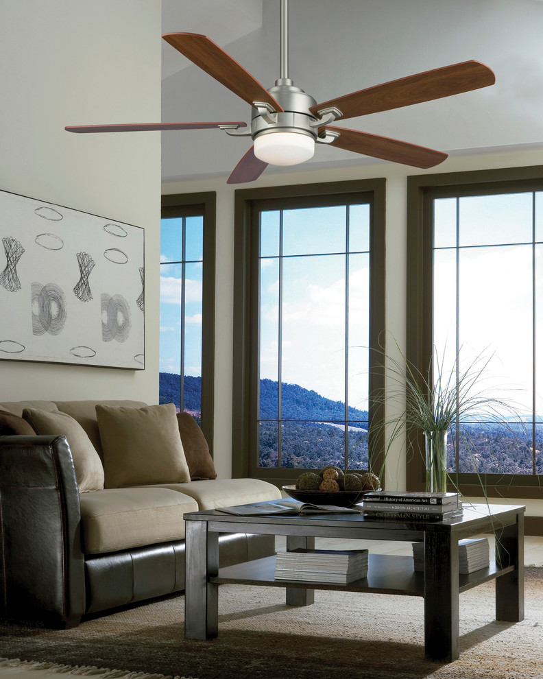 Fanimation Ceiling Fans - Transitional - Living Room - San ...