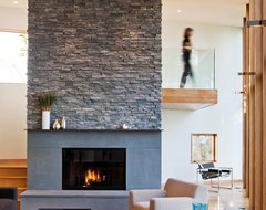 Farquar Lake Residence contemporary-living-room
