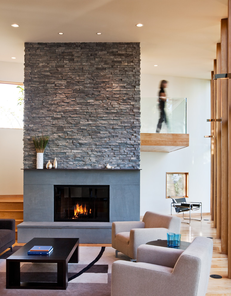 Living room - contemporary living room idea in Minneapolis with white walls and a standard fireplace
