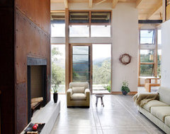 Feldman Architecture modern-living-room