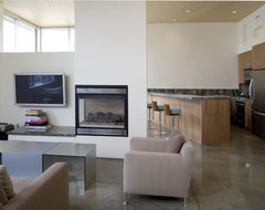 Fireplace- a divider of space modern-living-room