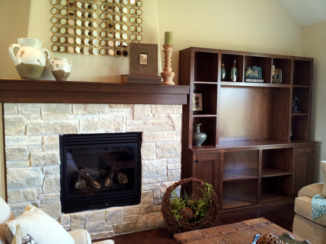 Fireplace & Media Wall contemporary-living-room