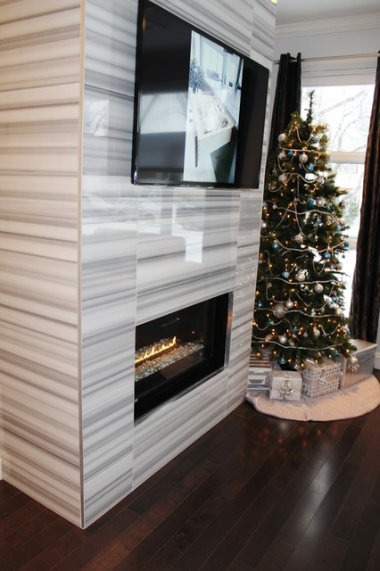 FIREPLACE contemporary-living-room