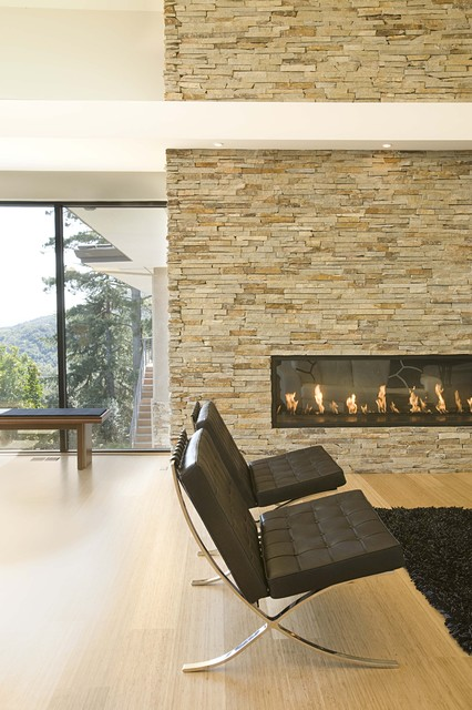 fireplace contemporary living room