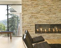 fireplace modern-living-room