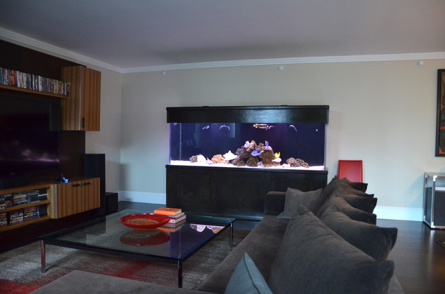 Four Seasons Residential Shark Tank Modern Living Room