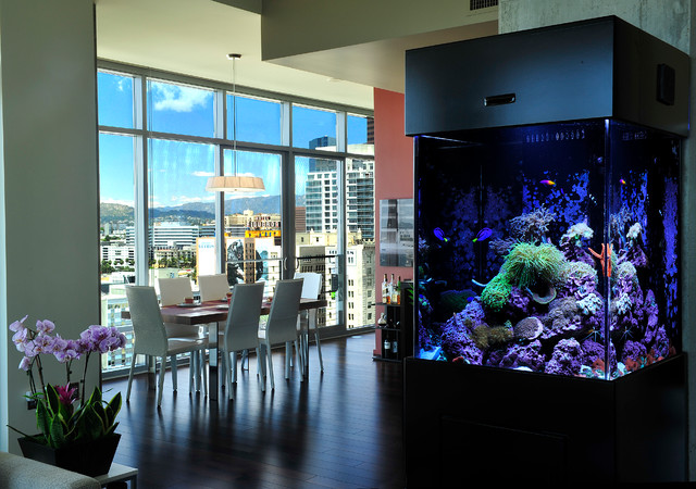 Free Standing Custom Aquarium Living Reef Living Room