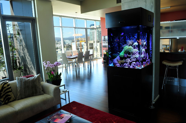 120 Gallon Free Standing Custom Aquarium Living Reef Living Room
