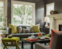 Funky and Fun Living Room transitional-living-room
